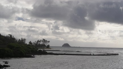 Fishpond_in_east_Molokai-(WC)