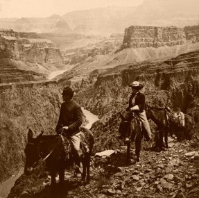 Grand View Trail, Grand Canyon, 1906