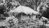 Grass Hut Salvation Army Girls Home-postcard-1930s
