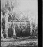 Grass house at Lalani Village, Waikiki-PP-32-4-003