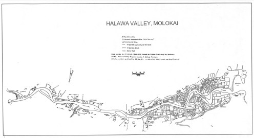 Halawa-Settlement-Map-Kirch