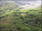 Harold L Lyon_Arboretum-aerial-Group70