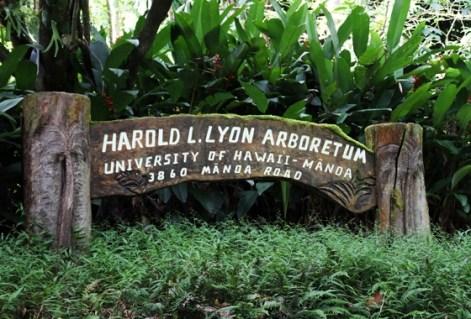 Harold L Lyon_sign-UH