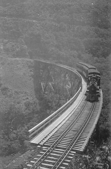 Hawaii Consolidated Railway Train