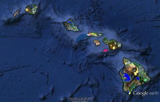 Hawaiian-Big_5-Statewide