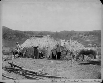 Hawaiian family and their houses thatched with lauhala-PP-32-2-035-1880s