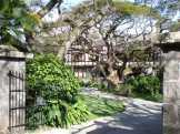 Honolulu-Manoa-Road-2859-WC