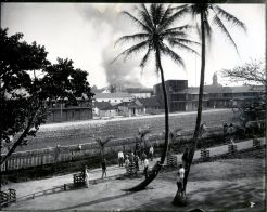 Honolulu_Chinatown_Fire_of_1900_(13),_photograph_by_Brother_Bertram