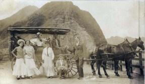 Horse Drawn Buggies at Pali Lookout