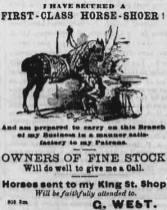 Horse_Shoer-Ad