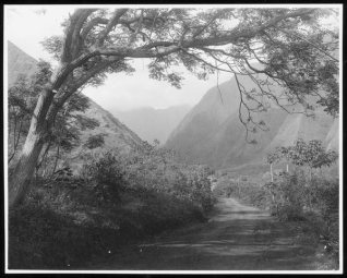 Iao Valley from Wailuku-1900s