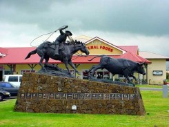 Ikua_Purdy-Statue-Parker_Ranch_Shopping_Center