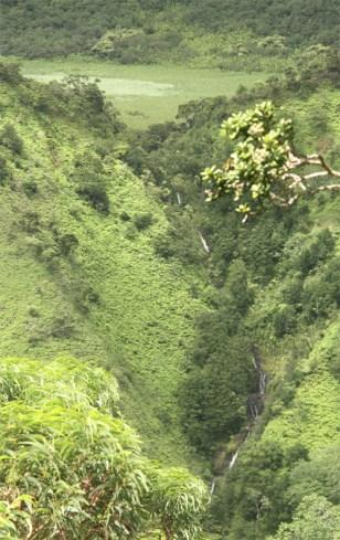 Kaau-Crater-Waterfalls