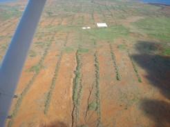 Kahoolawe-planting-hellers