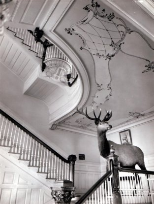 Kainalu-Elks-interior-stairs