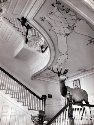 Kainalu-Elks-interior-stairs