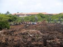Kaneiolouma-cleanup