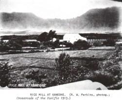 Kaneohe Rice Mill-1913