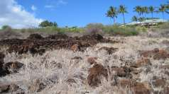 Kapihaʻā village site heiau below Mānele Bay golf clubhouse, near Pu'upehe Platform, Lānaʻi