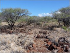 Kapihaa Preservation Area