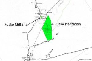 Puakō Plantation