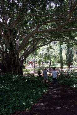 Kepaniwai Park and Heritage Gardens