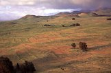 Kohala Field System_photo-Vitousek