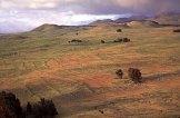 Kohala Field System_photo-Vitousek