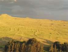 Kohala Field System_photo