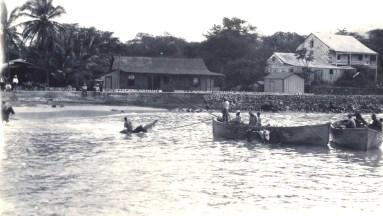 Kona-loading cattle-1912-ksbe