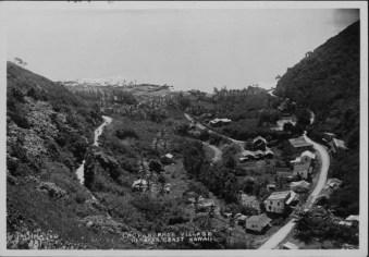 Laupahoehoe-PP-30-2-009-1930