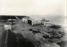 Laysan_Island-or-Midway-Munro-June_1891-(DenverMuseum)