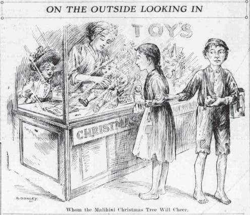 Malihini Tree - Hawaiian Gazette-Dec_16,_1913