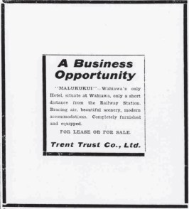 Malukukui-Business_Opportunity-PCA-Dec_19,_1910