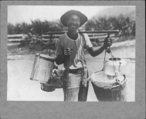 Manapua Man-PP-14-4-001-00001