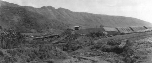 Manoa-Valley-Manoa Arboretum-UH