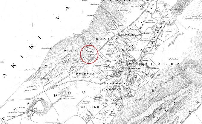 Manoa_Valley-Baldwin-(DAGS)-Reg1068-1882-portion