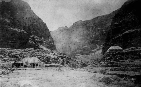 Miloli'i Valley, showing two grass-thatched houses-19th_century-(Carpenter)