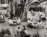 Moana_Hotel_Patio_Area_and_Banyan_Tree