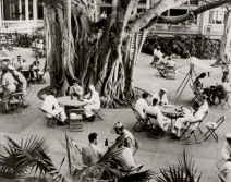 Moana_Hotel_Patio_Area_and_Banyan_Tree