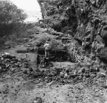 Nualolo_Kai-Bishop Museum Excavations within K-3 & K-4, Site 196-(Carpenter)-1958