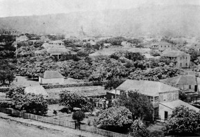 Old_Iolani_Palace_and_adjacent_premises,_ca._1850s