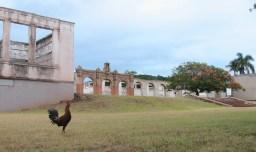 Old_Maui_High_School_ruins-WC