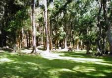 Palaau State-Park