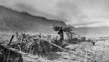 Plantation field worker hauling sugar cane up a handmade ramp onto the 4-wheel flat car-(Smithsonian)