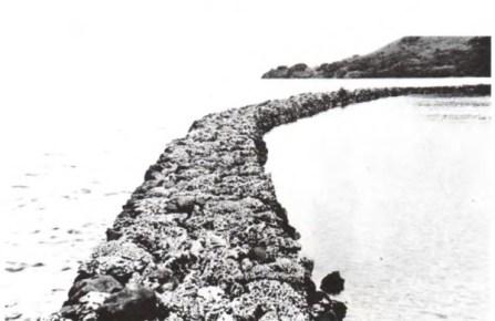 Pokole Fishpond Wall-1930-600