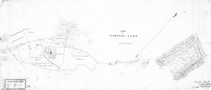 Punahou Land-Reg0392
