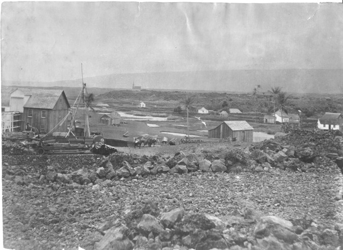 Punaluu village, Hawaii-S00084-1880