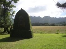 Rice_Monument-Kipu_Road