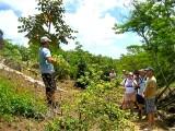 Rick Barboza Describes Native Plants (ahahui)